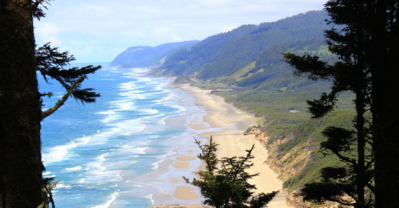 View North from Heceta Head