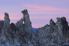 Ospreys on the Tufas